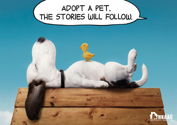 Adopt-a-pet.-The-stories-will-follow 500 Creative And Cool Advertisement Ideas