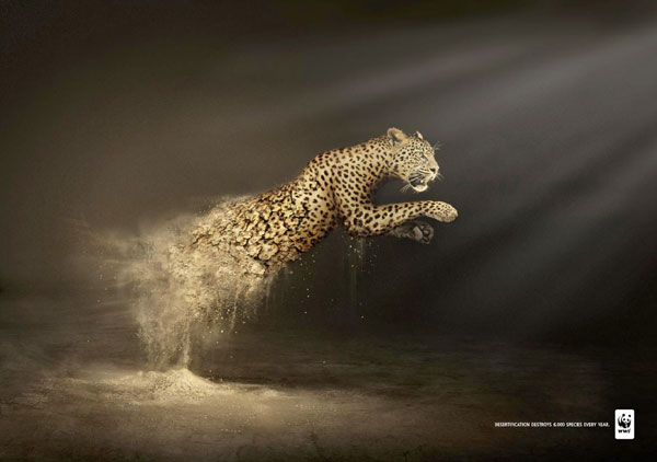 Desertification-destroys-6.000-species-every-year 500 Creative And Cool Advertisement Ideas