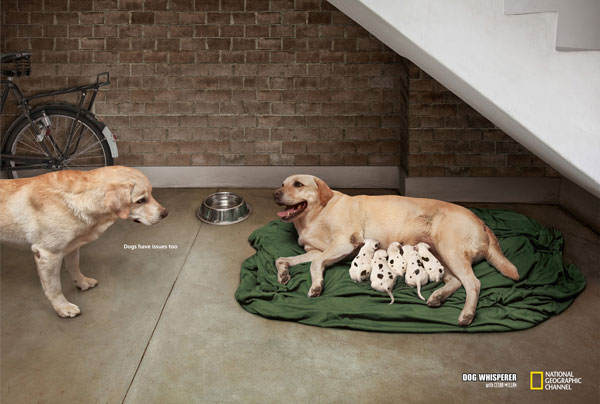 Dogs-have-issues-too Advertisement Ideas: 500 anuncios creativos y geniales