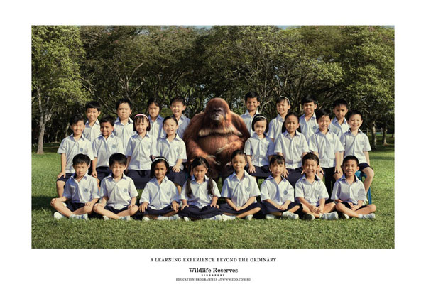 wildlife_reserves_singapore_teacher Advertisement Ideas: 500 anuncios creativos y geniales