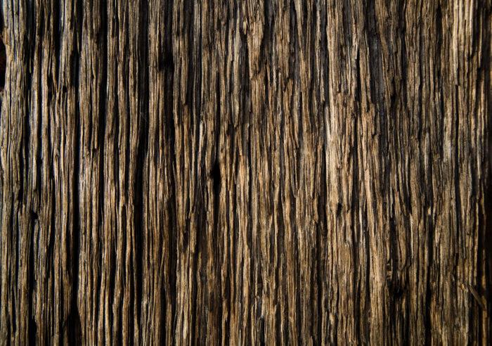 Wood_Texture_by_xNickixstockx-700x492 Texturas de fondo de madera que puede agregar en sus diseños