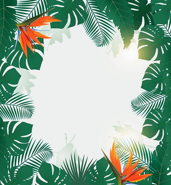 ilustración, Cómo hacer un fondo de Flyer de una fiesta tropical en Adobe Illustrator