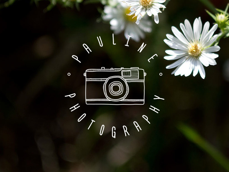 Logotipo de cámara dibujado a mano.