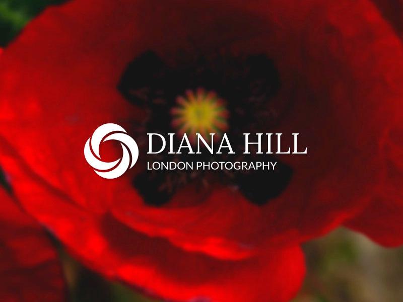 Logo de apertura floral