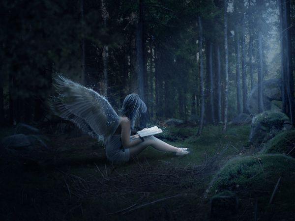 Crea una escena mística del bosque nocturno con un ángel