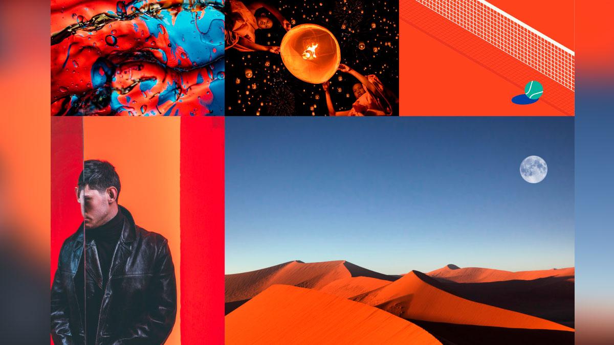 tendencia de color by Shutterstock